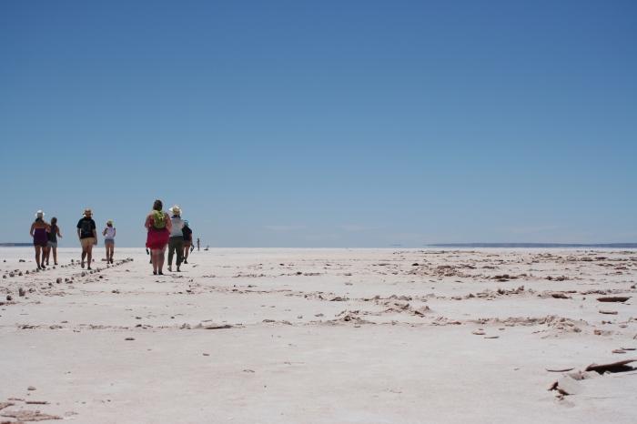 Big salt lake close to the highway