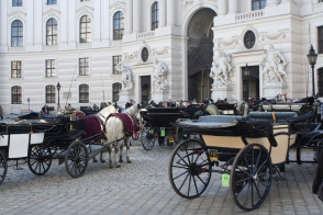 Carriages near Hofburg