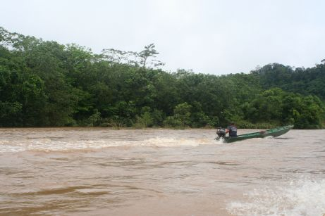 A boat on the jungle river