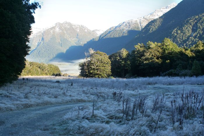 Frosty looking landscapes