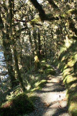Descending towards lake Howden