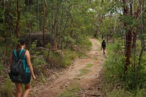 A wide path on the Windolf walk