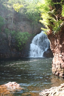 Swimming at Florence falls