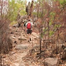 Walking towards Edith falls