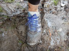 Straight into the mud