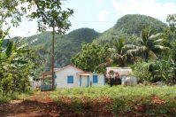 A farm near Vinales