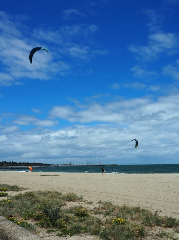 Lots of kite surfers